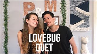 Jonas Brothers- Lovebug (Cover by Paul and Morgan)