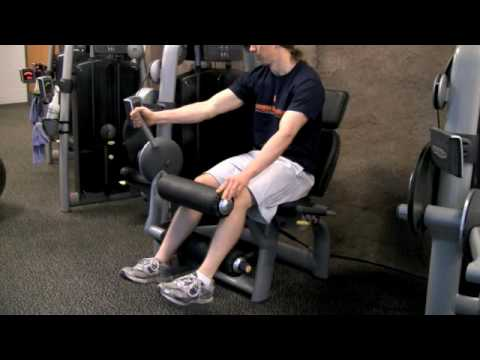 Techno Gym Leg Curl Demonstration Image 1
