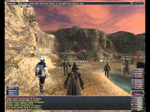 Misc Computer Games - Final Fantasy Xi Batallia Downs