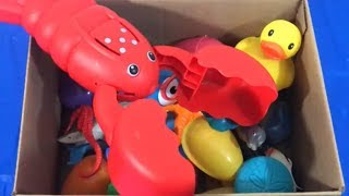 Learn Sea Animals Names Box of Toys Learn English Learn Colors