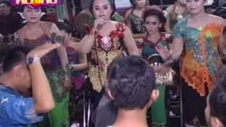 download lagu Suket Teki    Rahayu Ngremboko Tayub Koplo gratis