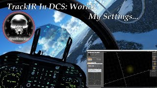 Tips and Tricks for Using TrackIR in DCS: World 2.5!