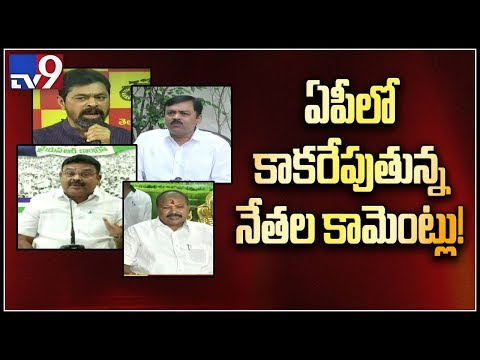 IT raids on TDP MP CM Ramesh raises political heat in AP - TV9