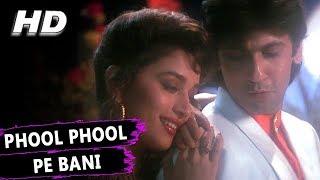 Phool Phool Pe Bani Teri Tasveer  Kavita Krishnamurthy Udit Narayan  Phool Songs  Madhuri