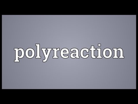 Header of Polyreaction