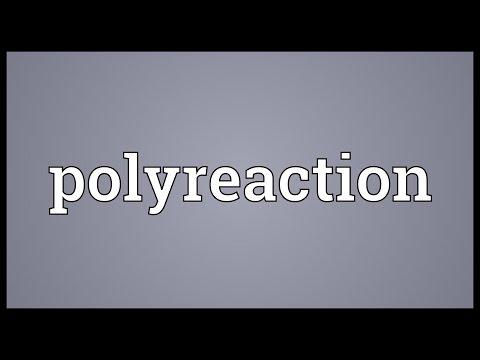 Header of Polyreaction