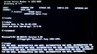 Virus.DOS.Vote