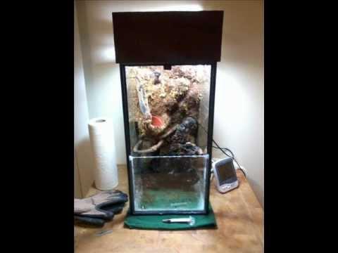 10 gallon vertical pauladarium build - YouTube 10 Gallon Vivarium