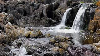 Download Lagu #8..1 Hour Relax-Sleep-Study-Water Sounds-1 Hora relajarse-sueño-estudio-agua suena Gratis STAFABAND