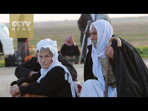 Islamic State militants release around 350 Yazidis in N. Iraq