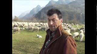 download musica Il sigRenato e ilPatriarca