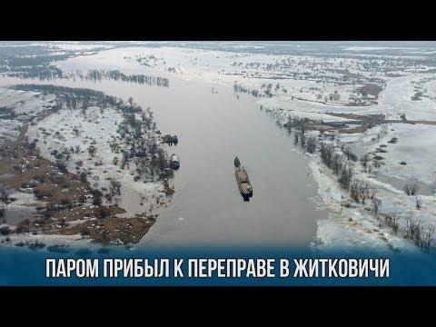 Паром прибыл к переправе в Житковичи
