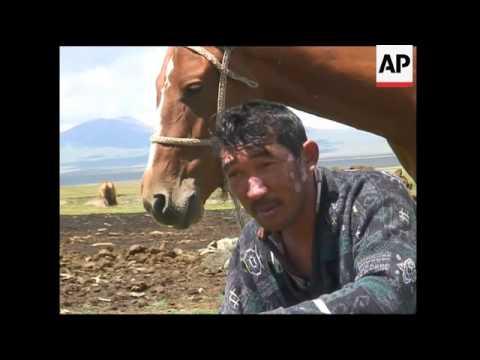 Milking horses in Kyrgyzstan
