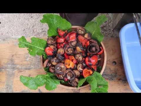 Шашлык из шампиньонов и болгарского перца