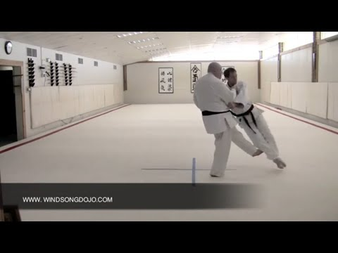Judo  Throwing - Uchimata and Okuri Ashi Harai.mov Image 1