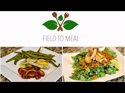 FAT LOSS HEALTHY DINNER IDEAS W/ FIELD TO MEAL | DALLAS, TX  HEALTHY & LOCAL MEAL DELIVERY SERVICE