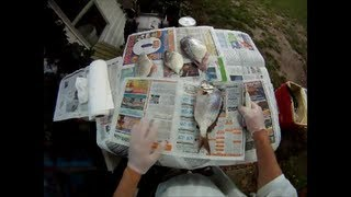 How to Fillet a Porgy and Remove Bones
