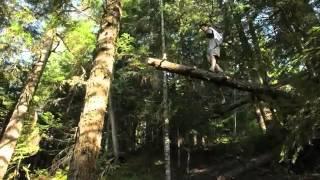 cabaña secreta en el bosque