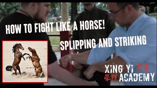 Xing Yi Quan: Fight Like a Horse! Ma Xing Slips and Strikes [APPLICATIONS]