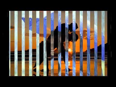 Bechain Mera Yeh Dil Hai - Bollywood LoVE Song