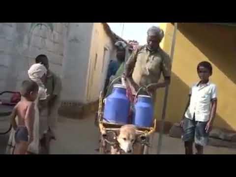 Rohit video new 2018
