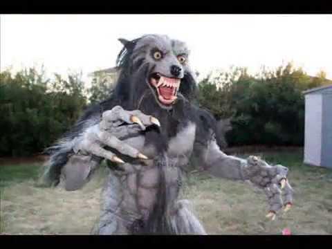 Halloween Warewolf