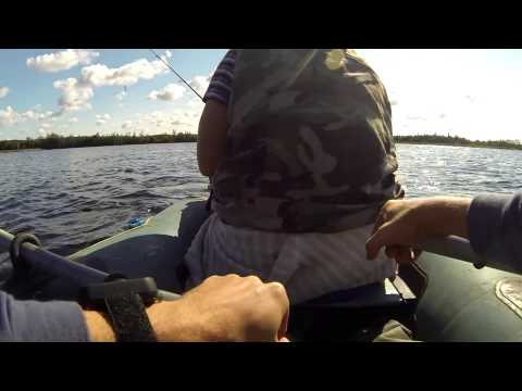 ловля щуки в шатурских озерах