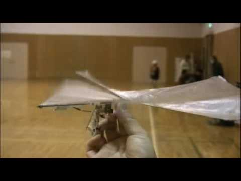 New Concept Ornithopters