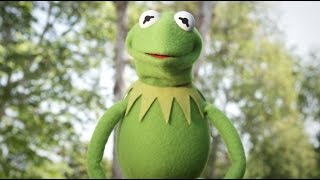 Kermit Celebrates the Start of Summer   with Kermit The Frog    The Muppets