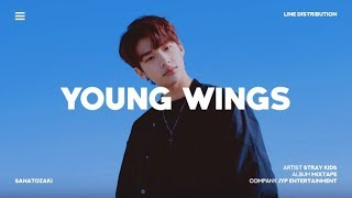 Stray Kids (스트레이 키즈) - Young Wings (어린날개) | Line Distribution
