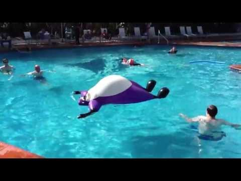 Inflatable Raccoon goes for a Swim