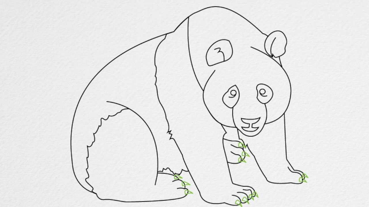 step by step how to draw a baby panda
