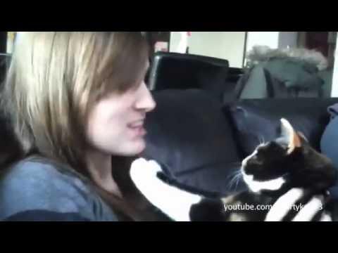 Öpülmeyi Sevmeyen Komik Kediler ve Köpekler