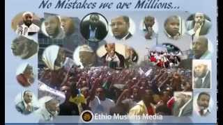 The Ethiopian Muslims for freedom of religion National support group In the US