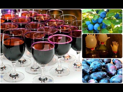 Приготовление вина из слив в домашних условиях