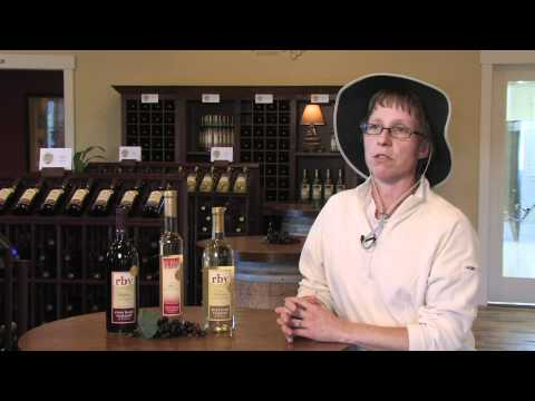 Wisconsin Winery Tour - River Bend Vineyard & Winery, Chippewa Falls, WI