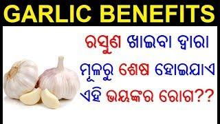 ରସୁଣ ର ୧୪ ଟି ଔଷଧୀୟ ଗୁଣ   Garlic health benefits in Odia   Rasuna ra upakarita   ODIA HEALTH TIPS