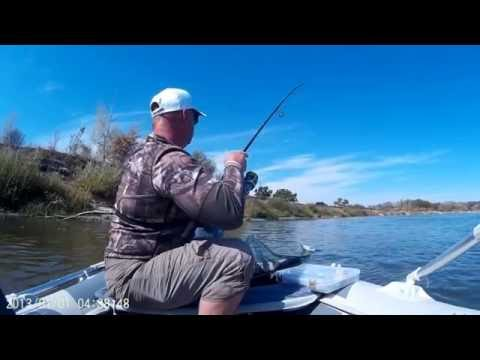 ловля судака на волгоградском водохранилище видео