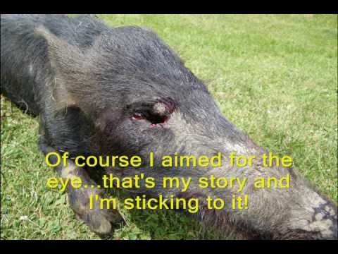 Boar Preserve Hunt with i-KAM Xtreme Video Glasses, AR-15, and HK USP .45 Compact Tactical