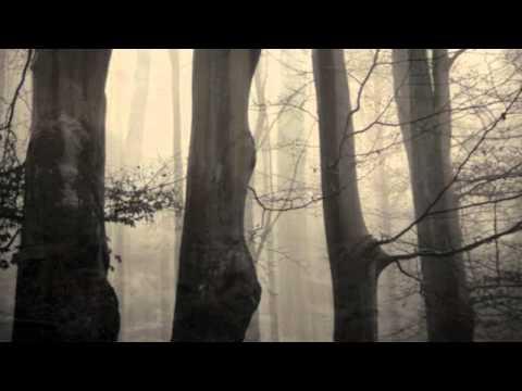 Dark Sanctuary - Tout Ce Sang Vers