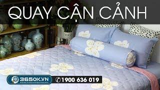 Ga trải giường màu tím | Chăn ga gối màu tím hoa trắng trang nhã KS1-694