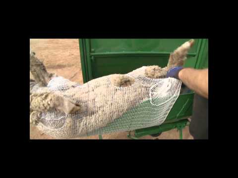 BioClip Wool Harvesting System