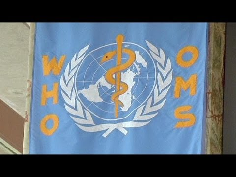 WHO holds second emergency committee meeting on MERS virus
