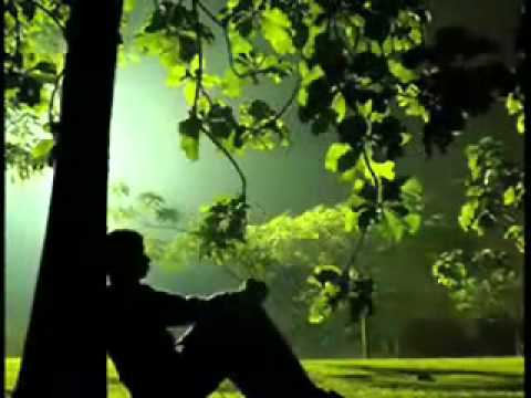 Youtube - Aye Ishq Humain Barbaad Na Kar.flv video