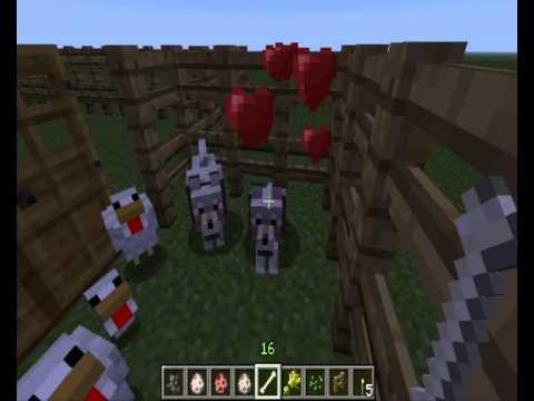 Como aparear y entrenar animales | Minecraft.