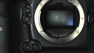 Canon Professional Network - The EOS-1D X
