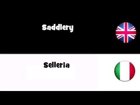 SAY IT IN 20 LANGUAGES=Saddlery