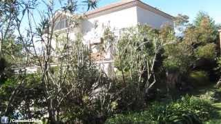 Poda de un seto de arbustos paso a paso para principiantes - Adelfa o Laurel de jardin