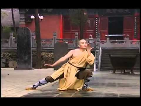 Myths and Logic of Shaolin Kung-Fu [Sub Esp] Image 1
