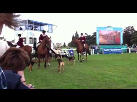 Blenheim Horse Trials 2011
